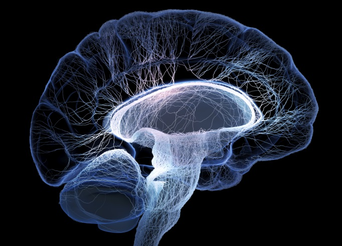 Functional Connectivity Linked to Severity of Chronic