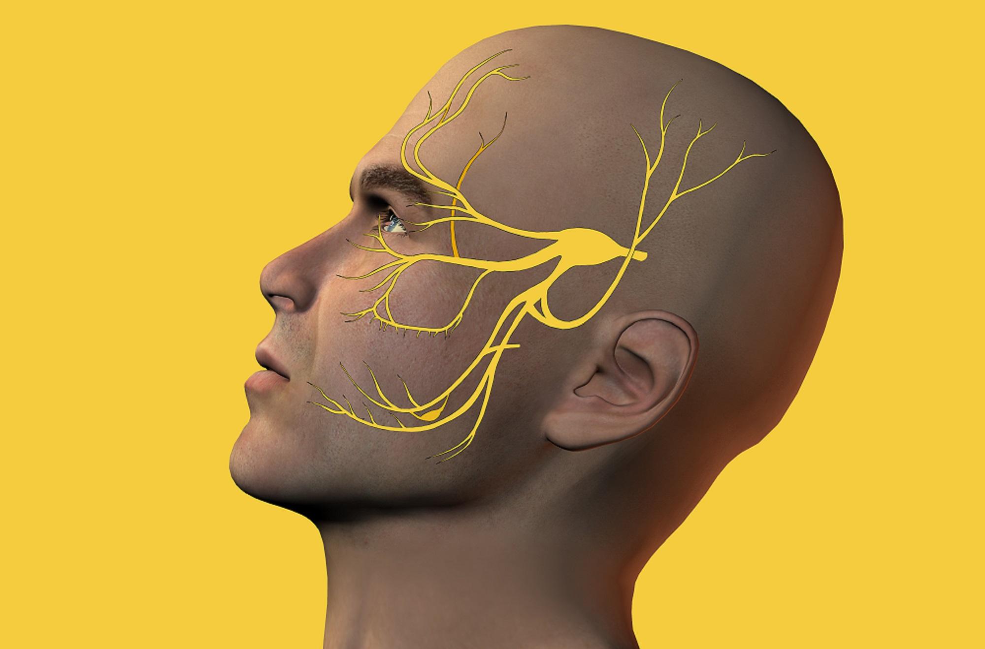 Teen facial nerve trigeminal age