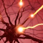 Warning: Fluoroquinolone Antibiotics Linked to Nerve Damage