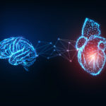 Digital image of heart and brain with link between them